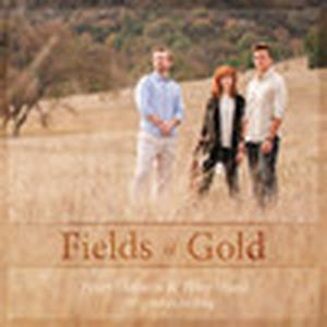Fields of Gold (feat. Lindsey Stirling & Tyler Ward) - Single