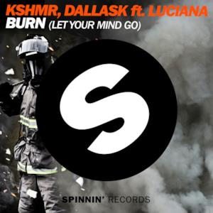 Burn (Let Your Mind Go) [feat. Luciana] - Single