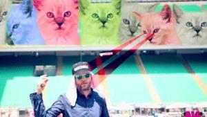 Estate 2013, Jovanotti: testo e video ufficiale del tormentone con tanto di gattini