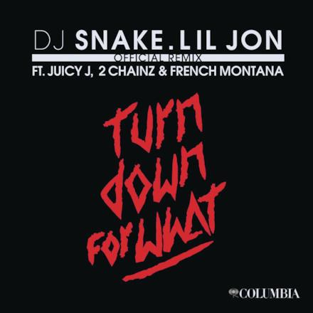 Turn Down for What (feat. Juicy J, 2 Chainz & French Montana) [Remix] - Single