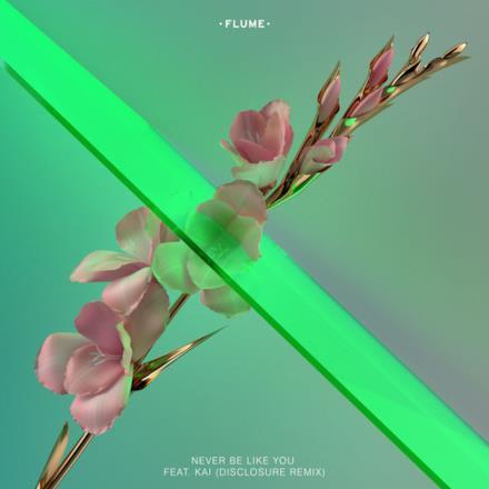 Never Be Like You (feat. Kai) [Disclosure Remix] - Single