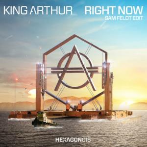 Right Now (feat. TRM) [Sam Feldt Radio Edit] - Single