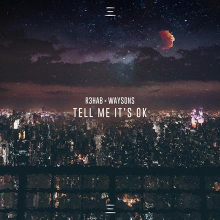 Tell Me It's Ok - Single