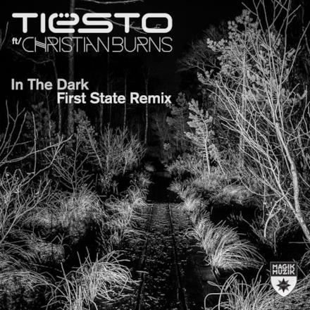 In the Dark (feat. Christian Burns) - Single