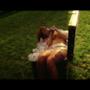 Rihanna nuda e insanguinata nel baule di Louis Vuitton