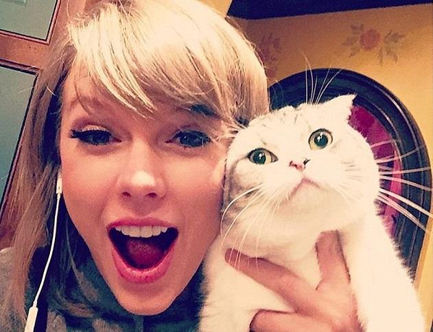 Taylor Swift su Instagram con il gatto