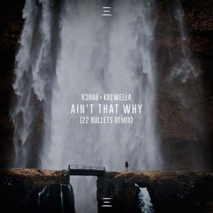 Ain't That Why (22 Bullets Remix) - Single
