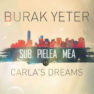 Sub Pielea Mea (feat. Carla's Dreams) - Single