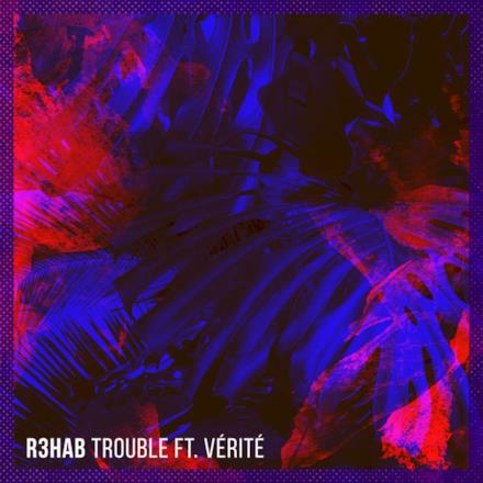 Trouble (feat. Vérité) - Single