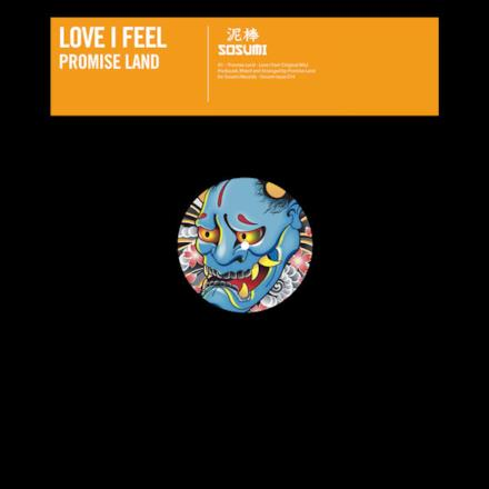 Love I Feel - Single