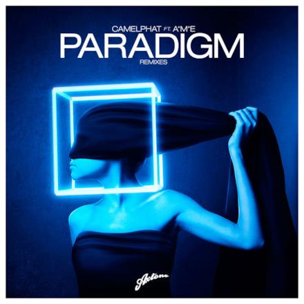 Paradigm (Remixes) [feat. A*M*E]