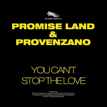 You Can't Stop the Love - Single