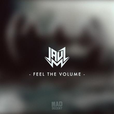 Feel the Volume - Single