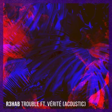 Trouble (feat. VÉRITÉ) [Acoustic] - Single