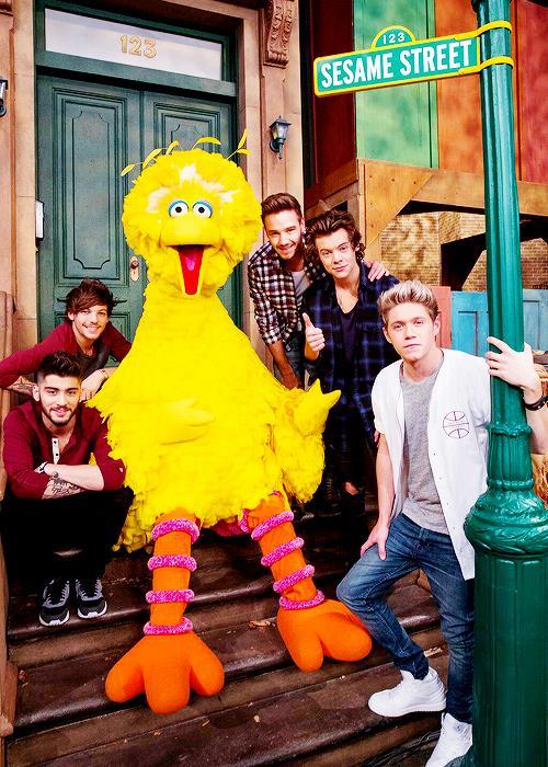 I One Direction appaiono a Sesame Street e scatta il delirio