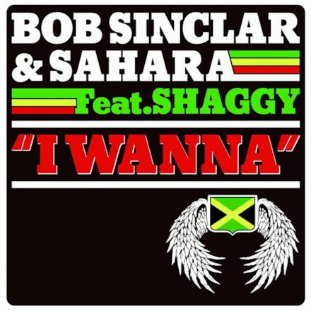 I Wanna (feat. Shaggy) - EP
