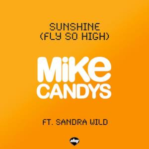 Sunshine (Fly So High) [Remixes] [feat. Sandra Wild]