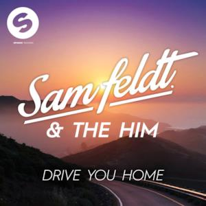 Drive You Home (feat. The Donnies The Amys) - Single