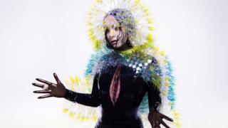 Copertina Vulnicura album 2015 Björk