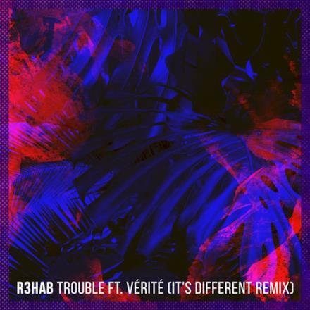 Trouble (feat. VÉRITÉ) [It's Different Remix] - Single