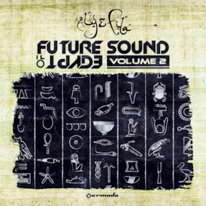 Future Sound of Egypt, Vol. 2