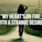 The Black Keys: le migliori frasi dei testi delle canzoni