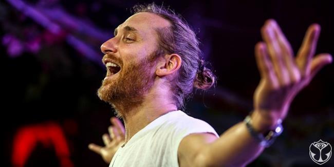 David Guetta Pelican