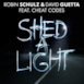 Shed a Light - Single