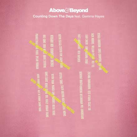 Counting Down the Days (feat. Gemma Hayes) [Radio Edit] - Single