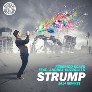Strump 2014 (feat. Andrea Guzzoletti)