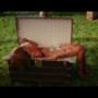 Rihanna nuda nel baule di Louis Vuitton