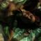 Una modella nuda per Paul Weller: il nuovo singolo scatena polemiche
