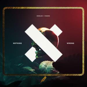 Nothing Wrong - Single