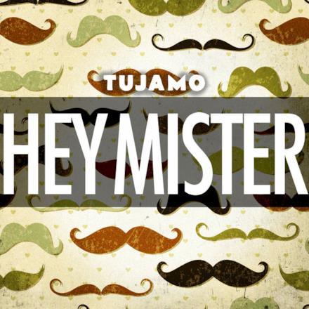 Hey Mister - Single
