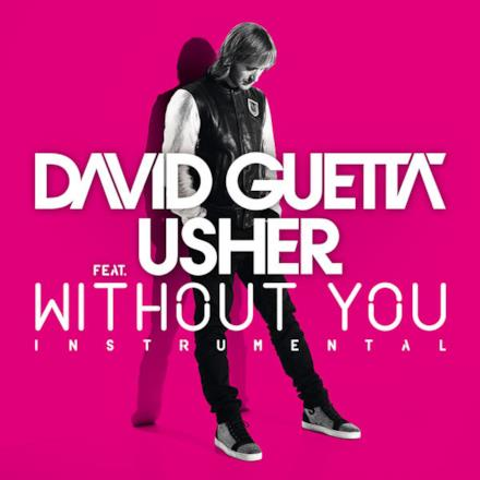 Without You (feat. Usher) [Instrumental Version] - Single
