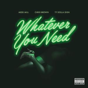 Whatever You Need (feat. Chris Brown & Ty Dolla $ign) - Single