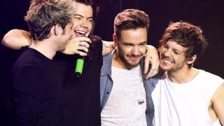 Gli One Direction alla Sheffield Arena nell'ultimo show dell'OTRA Tour