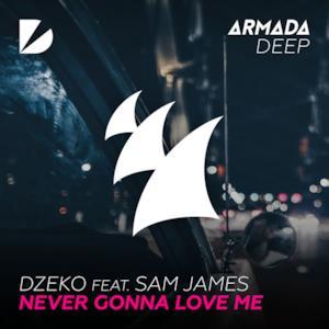 Never Gonna Love Me (feat. Sam James) - Single