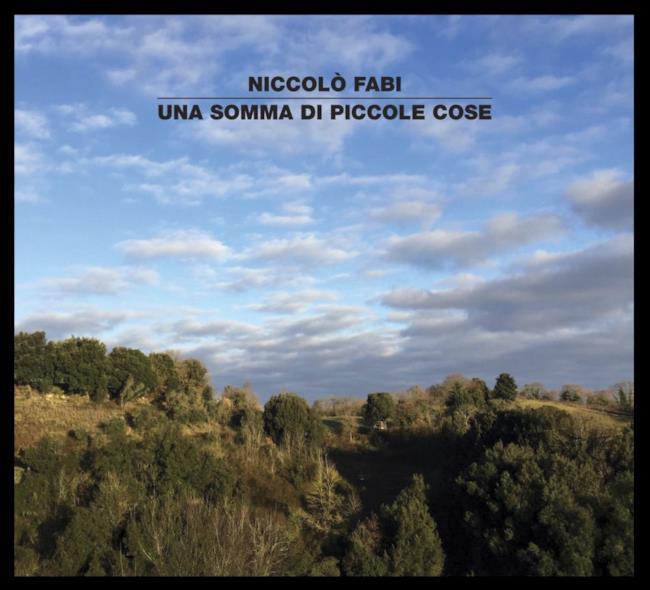 Niccolò Fabi cover album Una somma di piccole cose
