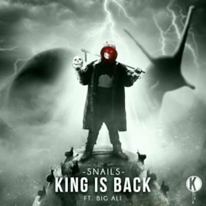 King is Back - Single