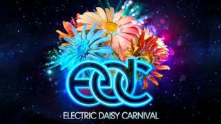 EDC di Las Vegas vicino al sold out sei mesi prima dell'evento