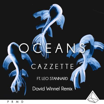 Oceans (feat. Leo Stannard) [Dave Winnel Remix] - Single