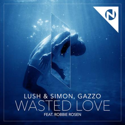Wasted Love (feat. Robbie Rosen) - Single