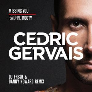 Missing You (feat. Rooty) [DJ Fresh & Danny Howard Remix] - Single
