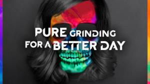 Avicii - Pure Grinding & For A Better Day, da Stories