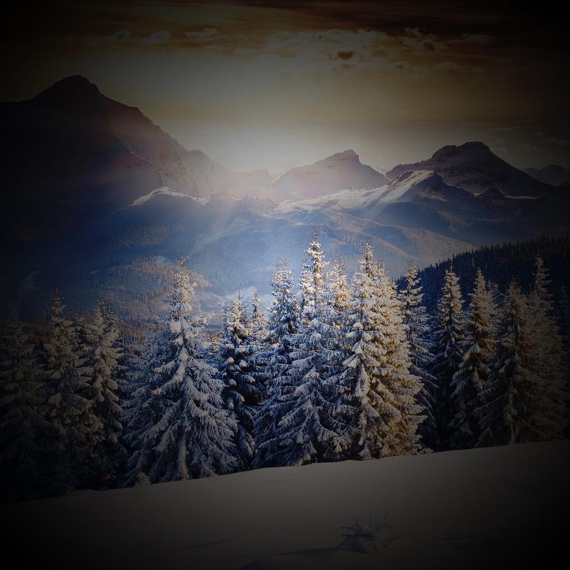 Copertina frasi sul silenzio della neve