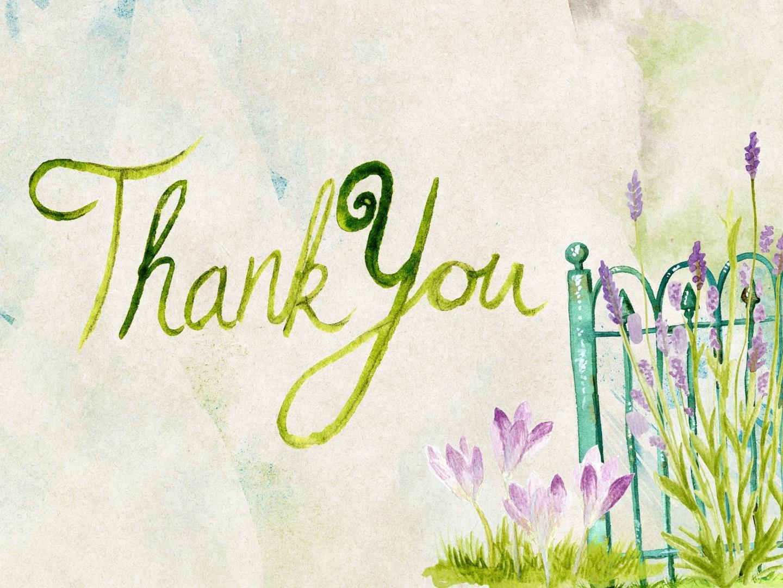 Frasi Di Ringraziamento 100 Modi Per Dire Grazie