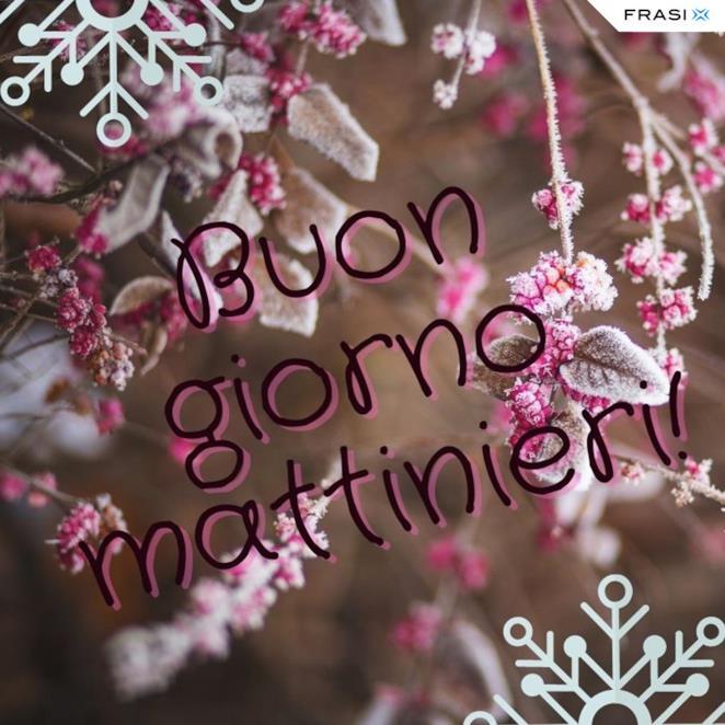 Buon giorno con fiori invernali