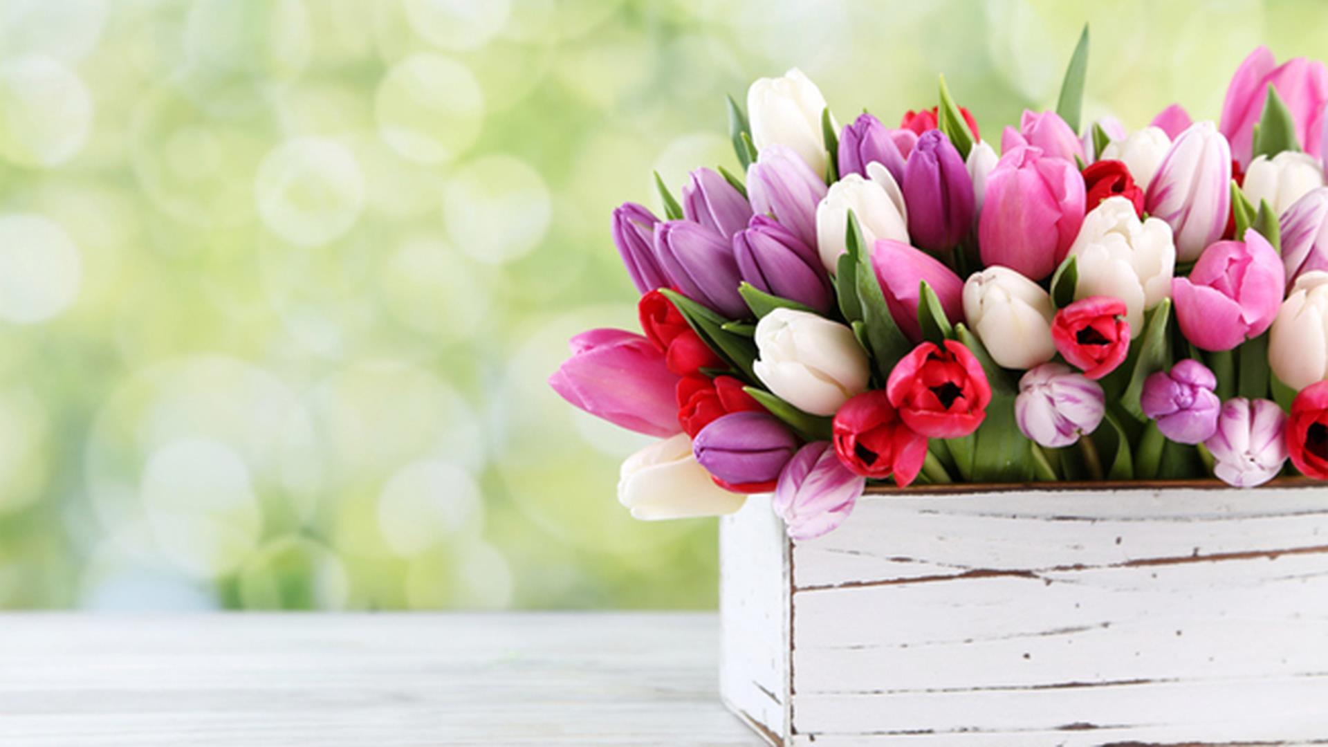 Scarica gratis immagini di fiori per il buongiorno, buonanotte e ...