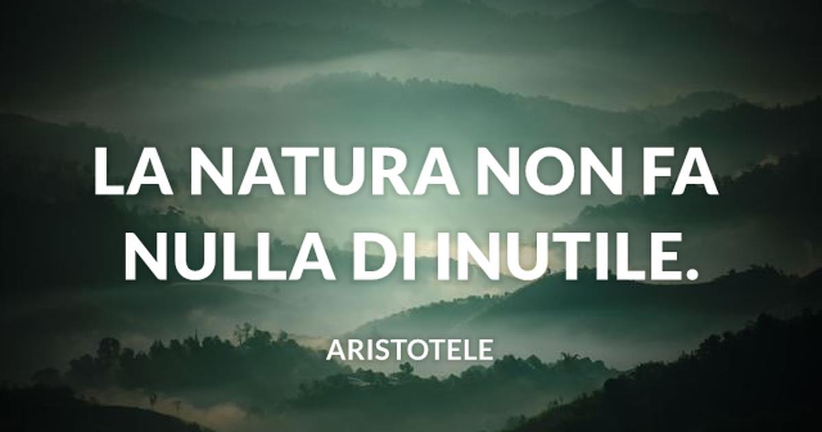 Le Frasi Sulla Natura E Sull Ambiente Piu Significative Di Sempre